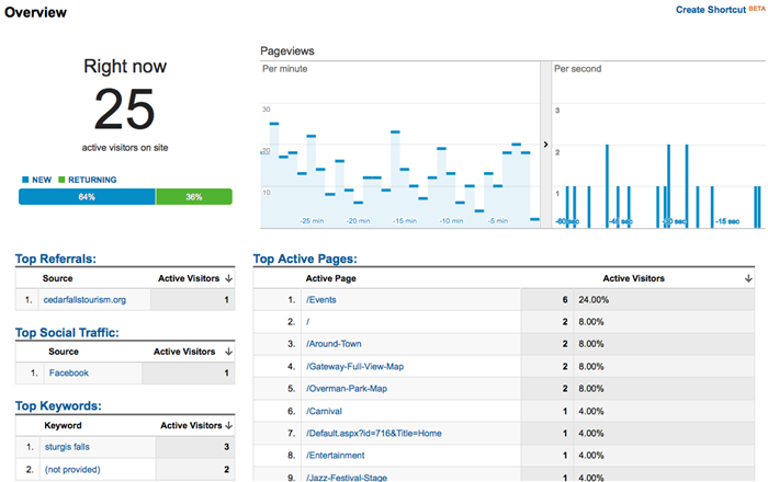 Real-time Google Analytics Overview