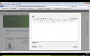 Screenshot - Sitefinity Content Editor