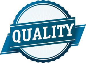 Software and website quality assurance testing